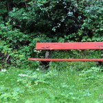 the_bench_watermarked